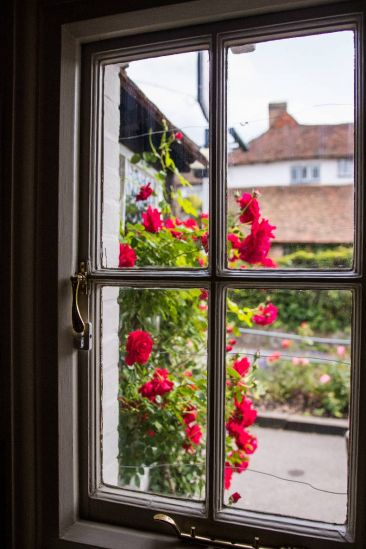window looking out onto a red rose push